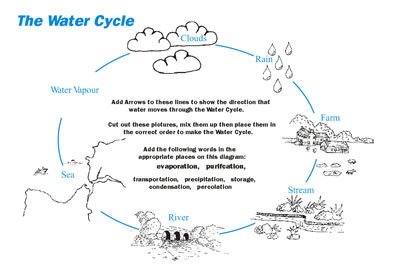 jpeg is a pattern for a printable water cycle bracelet the printable ...